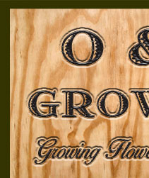 O J Growers 1313 Lake Drive Encinitas Ca 92024